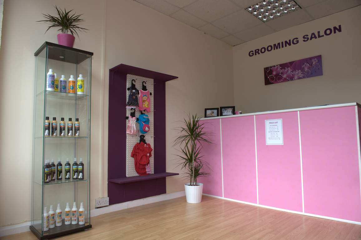 pet businesses for sale in essex